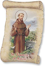 St. Francis Magnet